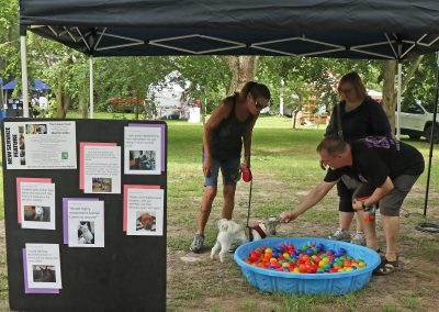 Animal Lovers Pet Care